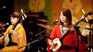 Shion/津軽三味線/live at chicken shack.