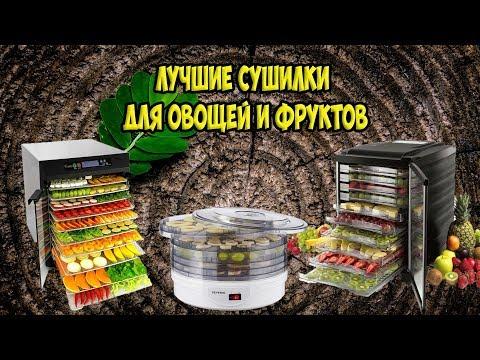 Лучшие сушилки для овощей и фруктов 2019 года