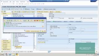 SAP BW معلومات سمات الكائنات