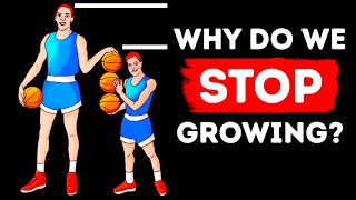 Download That's Why You Only Grow So Tall