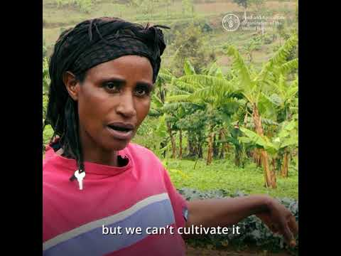 Solutions to water scarcity in Rwanda (short)