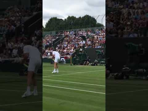 Download Funny moment Wimbledon 2019! Henri Leconte invites umpire to play