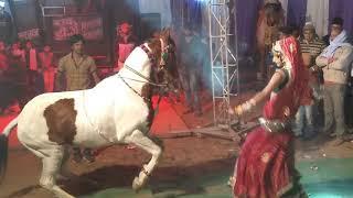 Le photo le photo Rajasthani dance