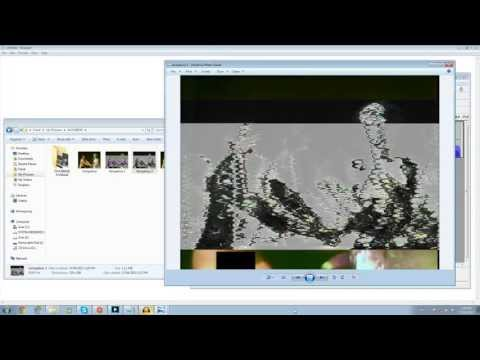 How To Databend Images in Audacity - A tutorial