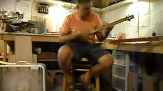 Vipar Renaissance stick dulcimer - Black Peak Studio