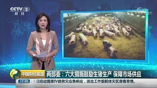 [中国财经报道]两部委:六大措施鼓励生猪生产 保障市场供应| CCTV财经