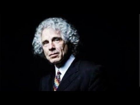 Noam Chomsky on Steven Pinker