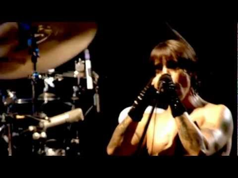 Red Hot Chili Peppers - Don't Forget Me (Live At Slane Castle) HQ