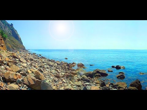 Смотреть дики видю пляж фото 705-309