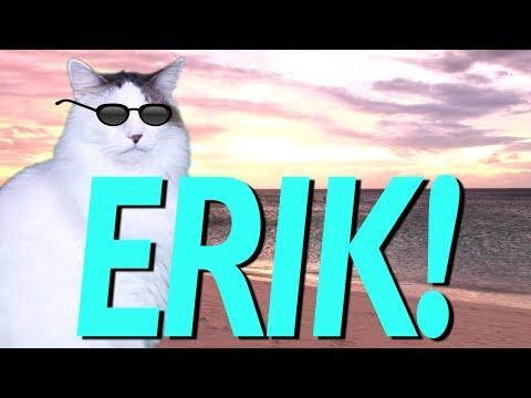 Happy Birthday Erik Epic Cat Happy Birthday Song Youtube