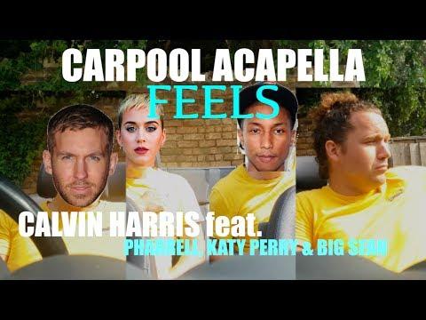Calvin Harris feat. Pharrell, Katy Perry & Big Sean - FEELS (Carpool Acapella Cover)
