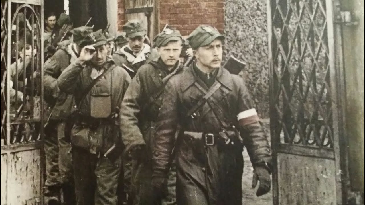 Znalezione obrazy dla zapytania III Brygada Wileńska NZW