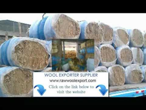 Scoured wool Exporter Ludhiana