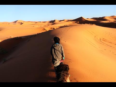 SAHARA DESERT CAMEL TREK - Morocco Vlog