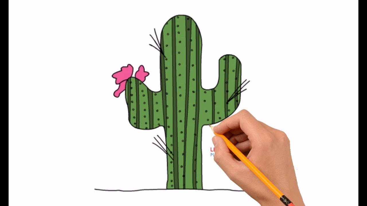 how to draw a cactus step by step easy for kids youtube. Black Bedroom Furniture Sets. Home Design Ideas