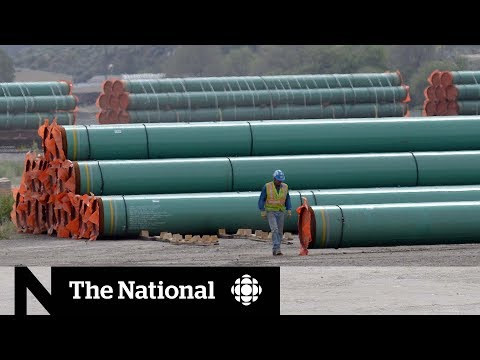 CBC News: The National: B.C.'s Trans Mountain legal challenge dismissed, appeal promised