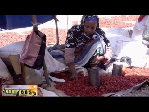 Dancalia  Etiopia  parte 1 di 2