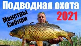 Рыбалка 2021 Подводная охота в Сибири Сломал ружъе ЁКЛМН паук подъемник как всегда выручает