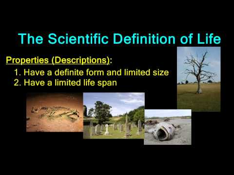 The Scientific Definition of Life (Properties)