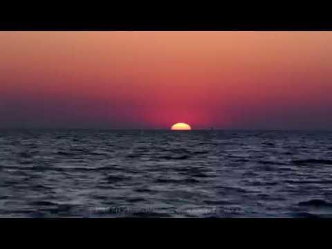 Wyspa Sobieszewska, Ptasi Raj - wschód słońca nad Bałtykiem / Sunrise on the Baltic (4K) - 2019