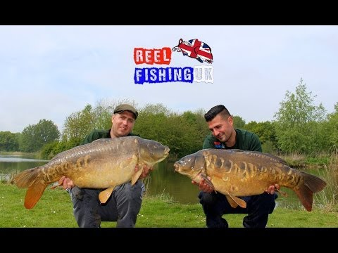 Carp Fishing Cottington Lakes ( Day Ticket Diaries ) Including A 40lbs Plus Mirror Carp