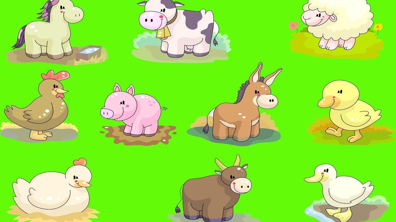 Картинки о животных и как они кричать