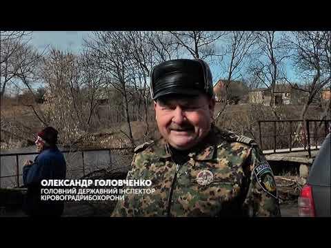 Канал Кіровоград: риба