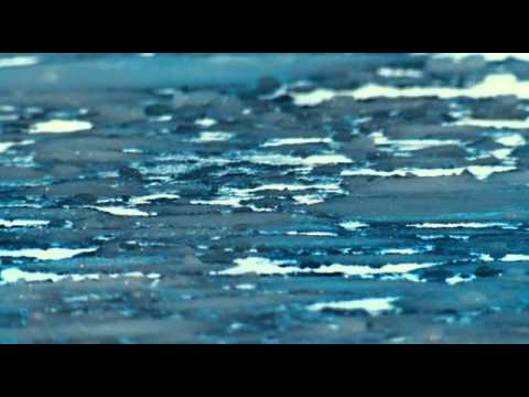 МАРШ  ПИНГВИНОВ   march of the penguins