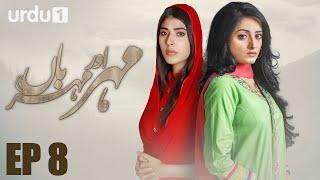 Meher Aur Meherban   - Episode 8 | Urdu 1 Dramas | Affan Waheed, Sanam Chaudhry, Ali Abbas