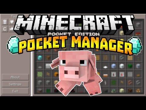 pocket manager mod