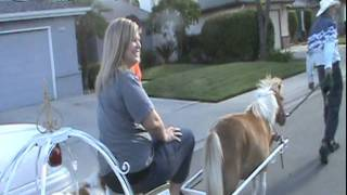 Princess Pony Carriage rides-counties Fresno-Kern-Stanislaus-Tulare-All CA cities