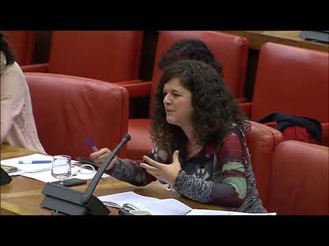 Sofía Castañón en la  Comisión de Igualdad el 29 de noviembre