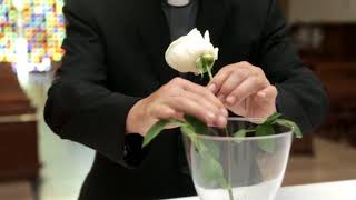 Intenciones del Papa Julio 2018 .- Los sacerdotes en su misión pastoral