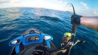 Catch n Cook! Spanish Mackerel - Jet Ski to Secret Fishing Island, Crazy Action!!
