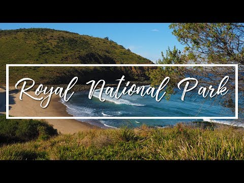 ROYAL NATIONAL PARK 2015 | GARIE BEACH TO FIGURE OF EIGHT POOL HIKE