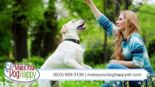 Make Your Dog Happy | Pet Training In Manchester
