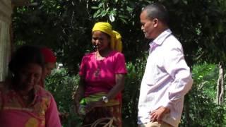 simal chaur nepal [HD]