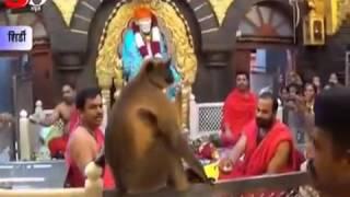Shri. Hanuman In Sai Mandir Shirdi