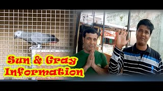 Raja da Gray parrot & Sun conure setup visit & more information (kolkata lovebirds) Last part.