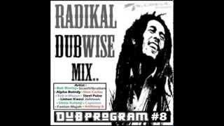 Radikal DubWise mix ( By Dub Program #8 )