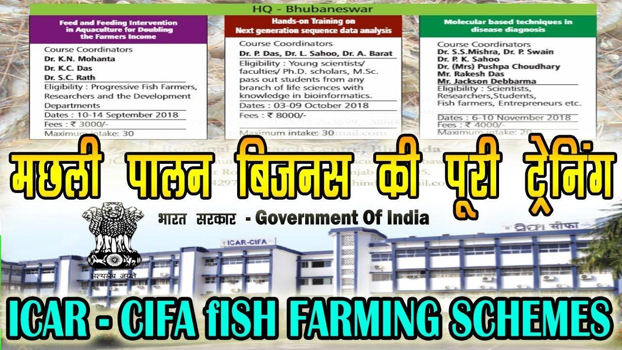 ICAR CIFA Fish Farming Training Schemes - मछली पालन की सबसे अच्छी प्रशिक्षण  योजना