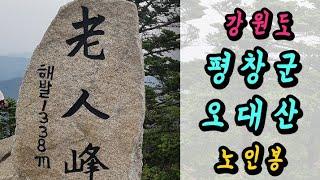 오대산 노인봉/65(다람쥐 부부 동행?)코스 ㆍ총거리ㆍ…