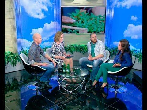 Ведущие программы «Своя ферма» Ольга Ольшевская и Дмитрий Степанищев: смотреть всем, будет интересно