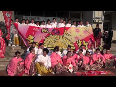 2015 沖縄県 成人式の様子 平成27年度  3