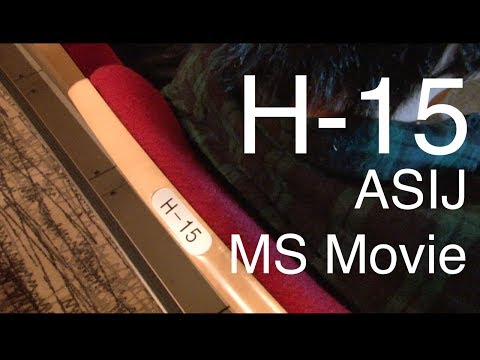 H-15 (2013)