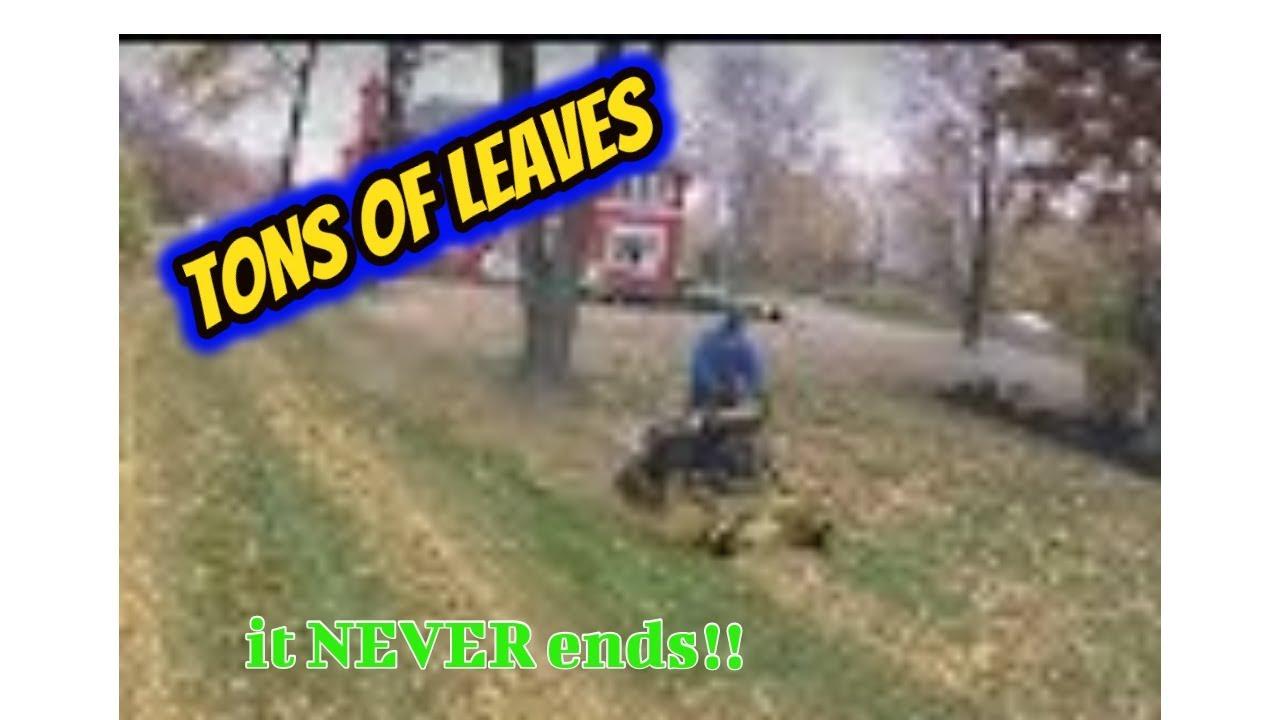 Mulch Or Bag Leaves