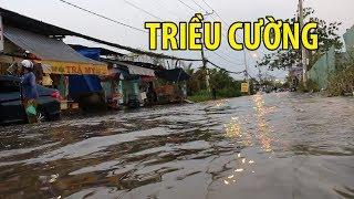 Người Sài Gòn lội nước về nhà do triều cường dâng đợt rằm tháng 10