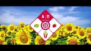 Агроплатформа Лімагрейн, Кіровоградська обл, серпень 2018