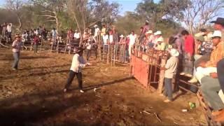 Zapotitlán de Vadillo - Fiestas Loma de Murguías 2013 TOROS