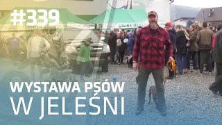 Darz Bór odc 339 - Wystawa psów w Jeleśni